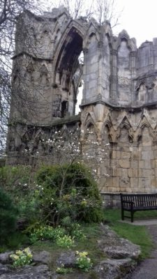 St Mary's Abbey ruins